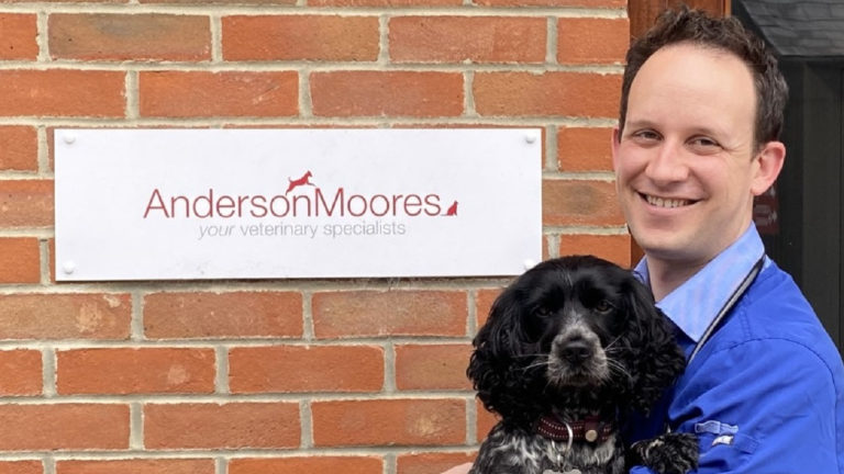 Anderson Moores launches full-time ECC service after appointment of diplomate Adam Mugford