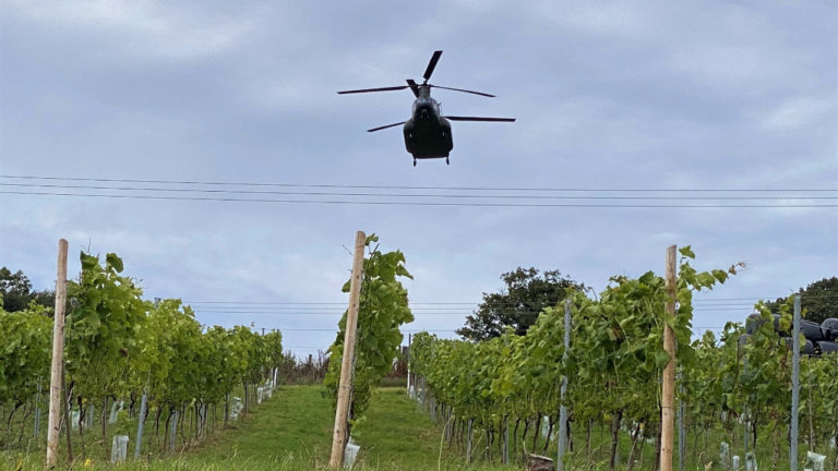 Grape news for booming vineyard as awards continue to pour in