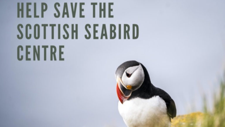 Warwickshire Business Launches Campaign to Help Save the Scottish Seabird Centre