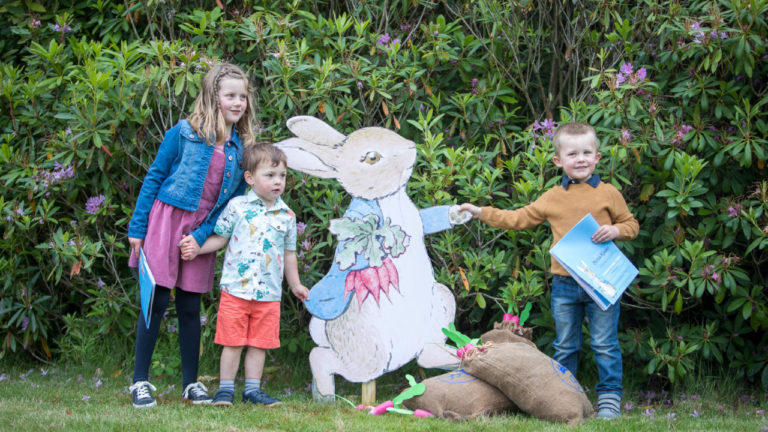 Floors Castle to open new Peter Rabbit nature trail for families