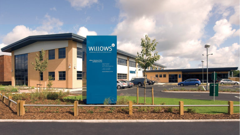 Renowned Specialist Returns to Willows as Clinical Director
