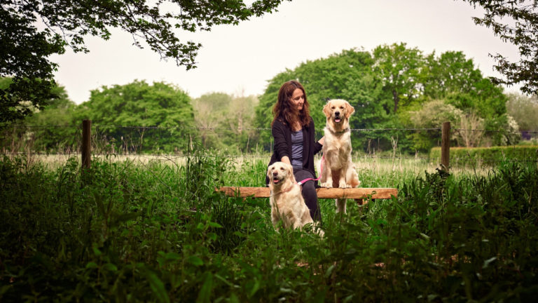 Hampshire vets create tranquil woodland walk retreat for staff and clients