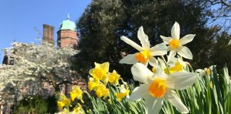 Cumbrian stately home celebrates Easter in style with weekend of activitiesl